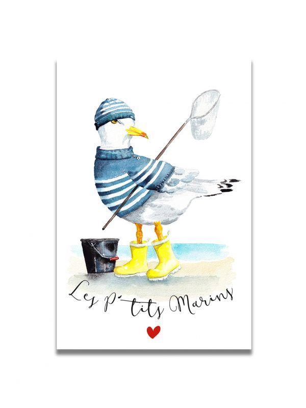 cartes-postales-ptits-marins-goeland-les-reves-de-caro